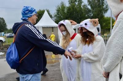 Волонтёры Культуры г.о. Истра
